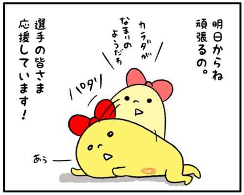 2018年平昌オリンピックたまこ-3